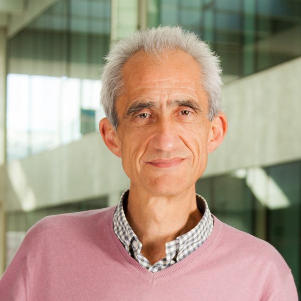 Fernando Vega Redondo