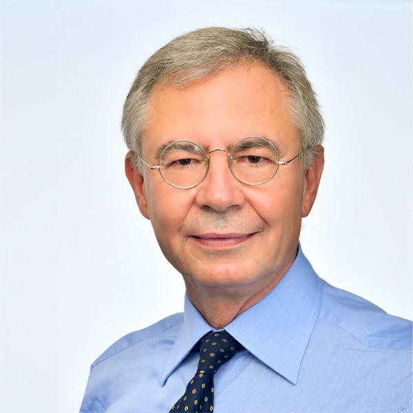 Gianluigi Vittorio Castelli